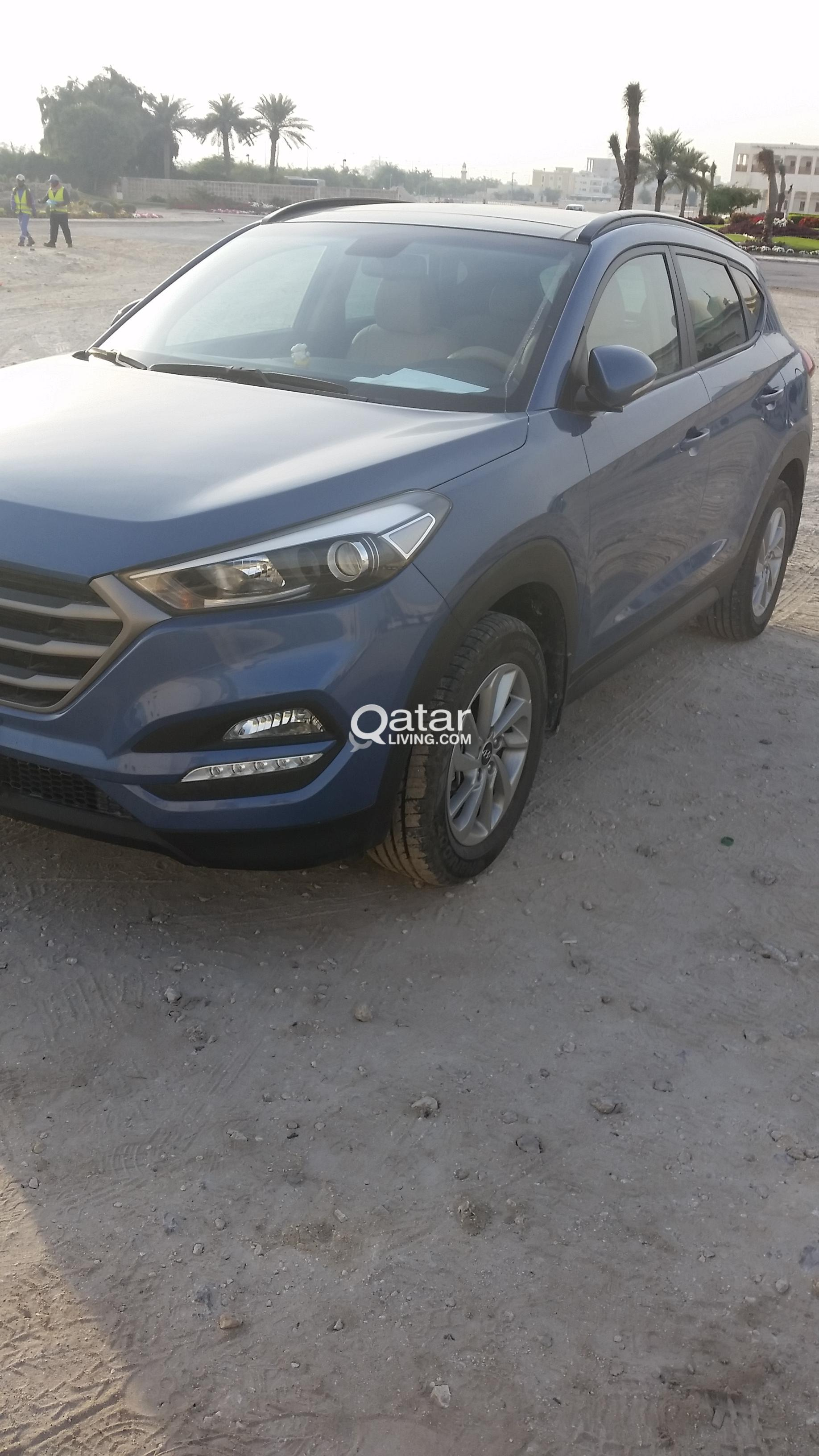 6 month old car sale | Qatar Living